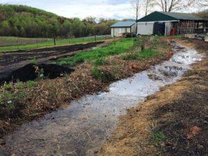 Rainwater Harvesting Swale